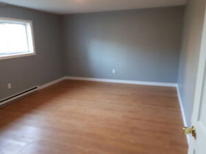 3 Bedroom Apartment close to the Avalon Mall and MUN