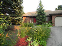 Country home with mature garden in the town of Fergus.
