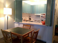 Beautiful Fully Furnished Studio Summer Sublet