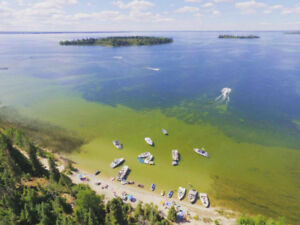 CANDLE LAKE REAL ESTATE