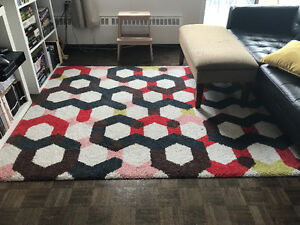 Accent area rug - price negotiable