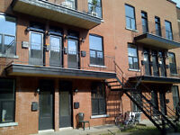 Beautifully Renovated 3 Bedroom Apartment Near Jeanne-Mance Park