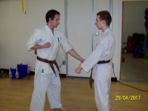 Adults Karate Classes in the Spring at the YMCA!! Peterborough Peterborough Area image 6