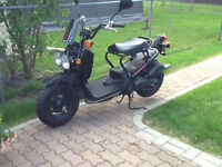 Honda Ruckus Gas Scooter Must Go