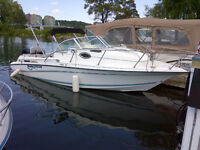 2001 Doral 240 Thunderpro 225Hp Optimax