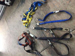 2 five point harnesses