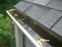 Gutter cleaning/Power washing/ All areas served/ Insured