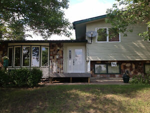 TURTLEFORD HOME FOR SALE - 307 Poplar Street