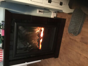 Beautiful compact wood electric fireplace.