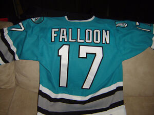 Autographed, game issued pro/semi-pro hockey jerseys for sale Windsor Region Ontario image 2