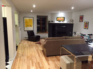 Renovated 4½ McGill Ghetto (semi-furnished & cleaning included)