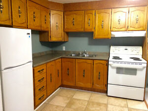 Two Bedroom Basement apartment, Goulds.