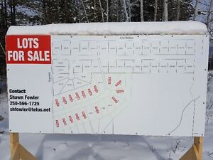 valemount 1/2 acre lots full service and paved