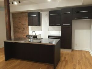 3 Bedroom Downtown Furnished McGill