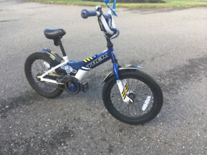 Boy's Trek Bike