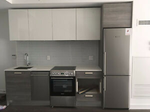 2 Bedroom plus den----- Downtown near to U of T and Bay Street
