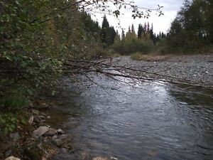 PLACER GOLD CLAIM, ANTLER CREEK $1500 Prince George British Columbia image 3