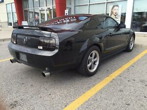 MUSTANG.  Stratford Kitchener Area image 3