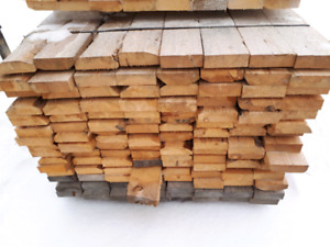 Exotic Y Wood Species Being Shipped Out Of Guyana