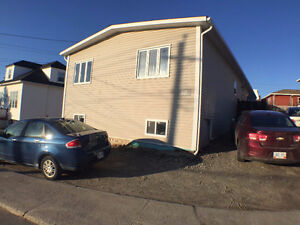 PORT AUX BASQUES- INCOME PROPERTY-2 units
