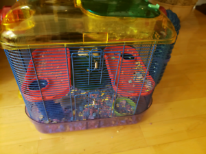 Dwarf hamsters and cage