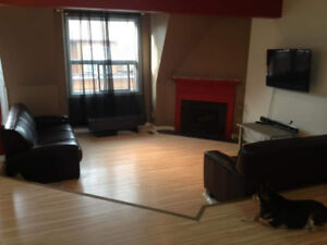 Private entrance pet friendly fully furnished condo