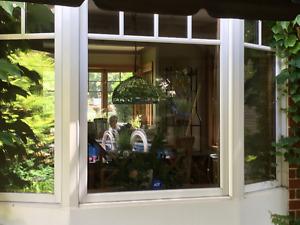 Magnifique fenêtre en baie/Sapin Douglas/ Stores sur mesure incl