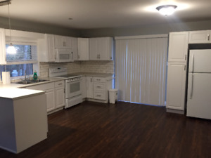 Luxury Apartment for lease