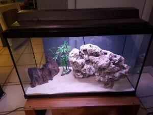 29 gallon fish tank