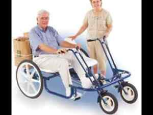 Joyrider 2 seat touring bike 1 speed  With dual baskets