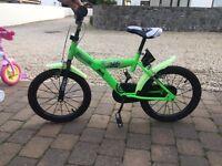 Boys ninja turtle bike