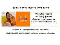 Self Employment - Earn extra Income