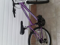 24 inches bike in new condition