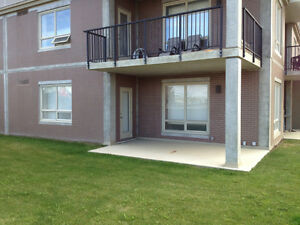 1 bedroom of 2 bedroom condo available immediately