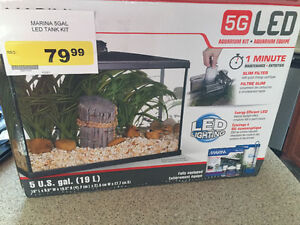 5 Gallon Tank, great starter tank, hospital or young fry tank.