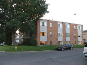 Available August 1....Quiet and Convenient Brevoort Park