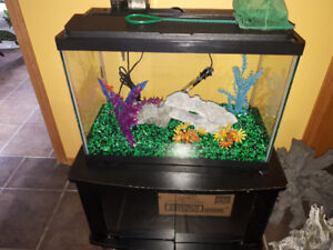 Complete set up Fish tank