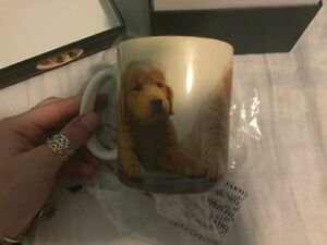 Decorative golden retriever puppy mug in matching containing box