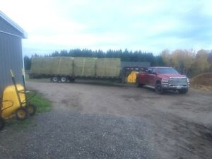 Trucking  and livestock