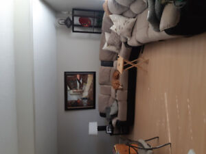 Room for rent in large south end home. $500