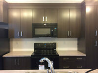 Brand New 2 Bed 2.5 Bath, Parking, Yard