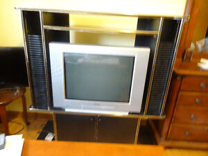 """Sony 29"""" TV  with TV stand $for 45 Only(Moving Sale)"""