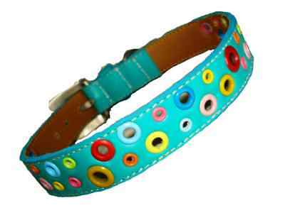 Cool Leather Dog Collar Loki Puppy Turquoise Loki Puppy Leather