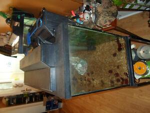 Fish tank stand kijiji 35 gallon fish tank with stand 3 for 35 gallon fish tank