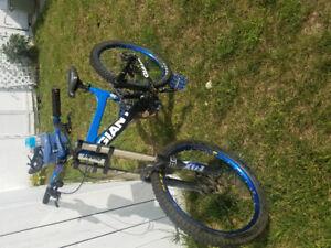 2009 Giant DH Bike