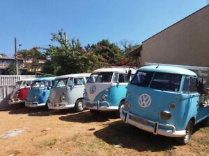 Many Volkswagen Bus, Vanagon, Kombi, Combi, Camper, Westfalia