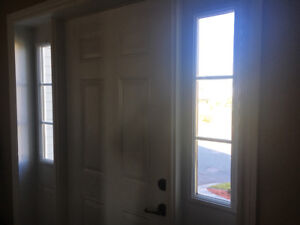 Steel door and sidelights for sale