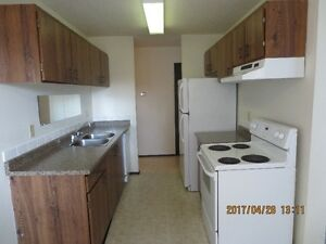 Beautiful Large One bedroom - Newly Renovated & Non-Smoking