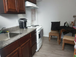 One bedroom / Bachelor Apartment for rent