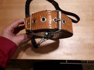 Large leather dog collar and leash